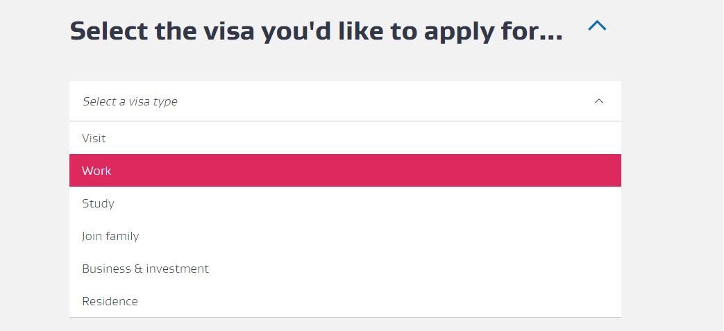Select the visa page