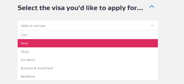 Select the visa page